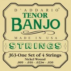 EJ63 Tenor Banjo, Nickel, [9-30]