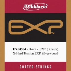 EXP4504